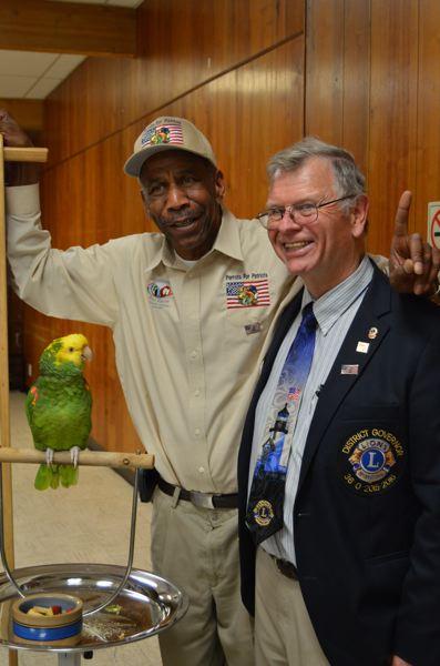 Lions and Parrots for Patriots