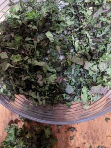 Spicy Noodle Kale Chop Dish
