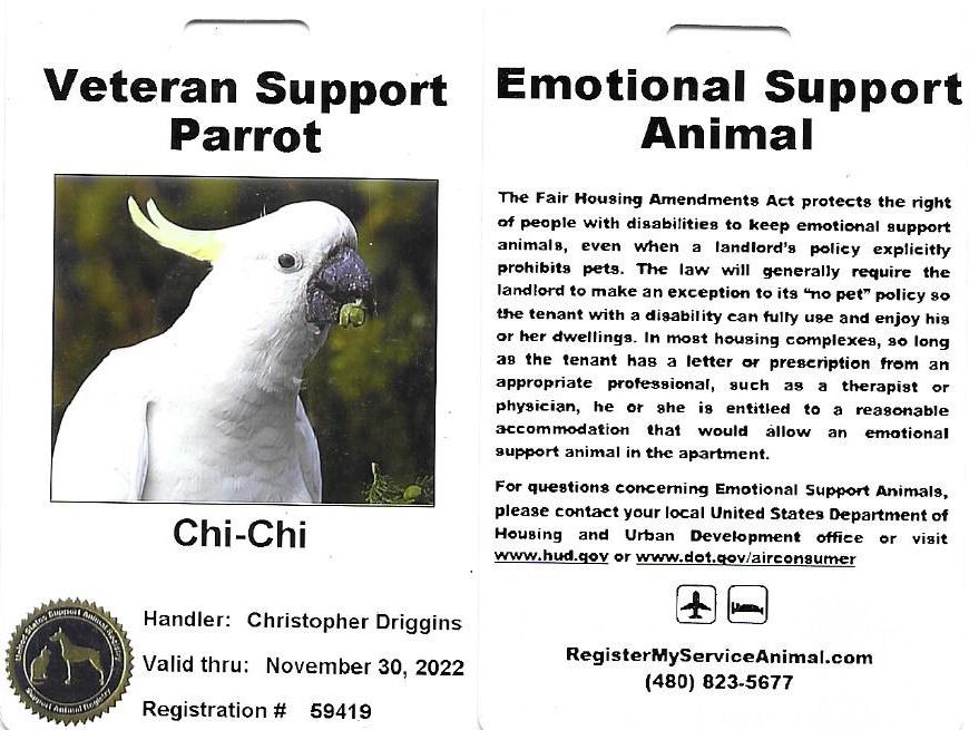 Registered Animal Support Badge
